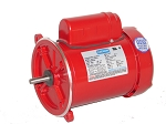 Leeson 3/4 HP 1725 RPM Feed Auger Drive Motor