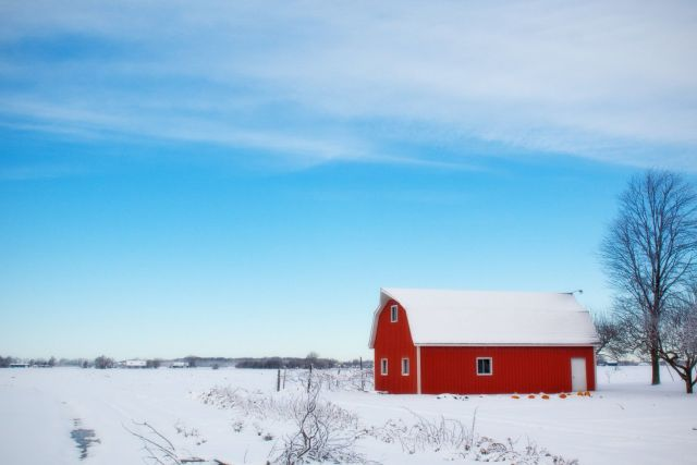 Creating Your Winter Farm: How to Prep Your Farm for Winter